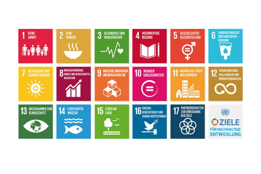 Logo UN Sustainable Development Goals